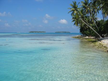 Maldiiiives